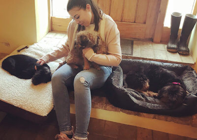 Sophie with rescue dogs